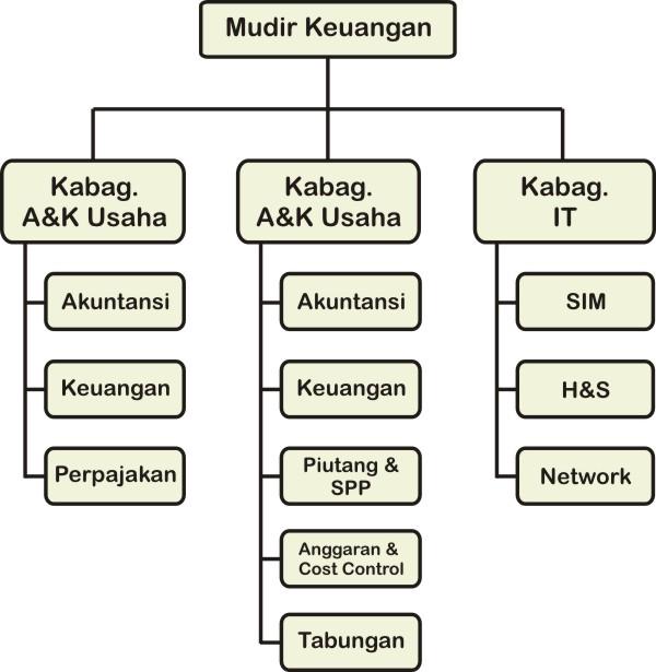 struktur organisasi - keuangan